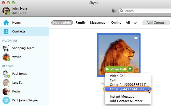 Capture d'écran du contact sélectionné dans la liste de contacts Skype et de son numéro de téléphone