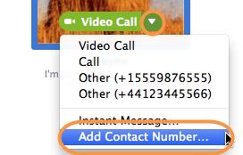 Capture d'écran du menu d'options avec l'option Add Contact Number (Ajouter un numéro de téléphone) sélectionnée. Le menu apparaît lorsque vous cliquez sur la petite flèche pointant vers le bas du bouton d'appel vert, que vous pouvez faire apparaître en plaçant votre curseur sur l'avatar d'un contact dans Skype